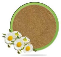 Rested Legs Ingredients - Chamomile