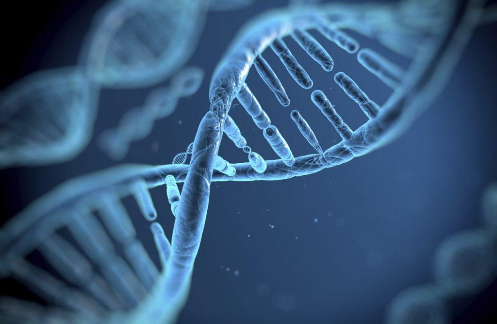 genetic link to RLS